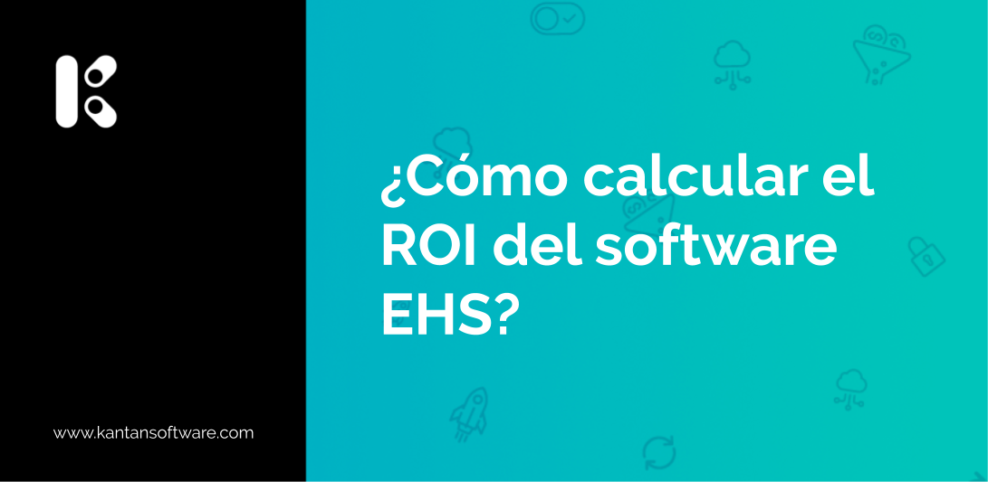 ROI del software